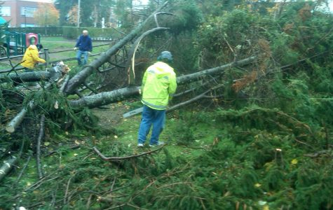 Back of school near Mrs. Hayes's house was most damaged after the storm. courtesy of Mrs. Hayes.