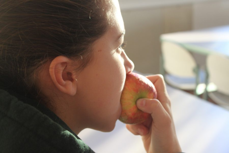 An+apple+is+one+snack+in+the+six-small-meal-a-day+schedule%2C+an+eating+routine+which+students+may+follow+to+feel+more+energized+throughout+the+day.