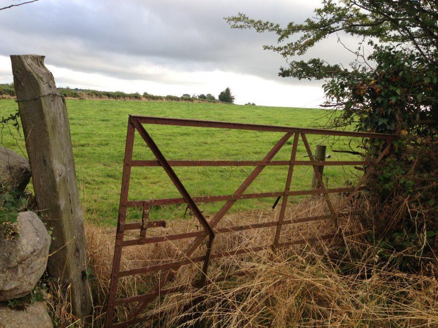 Photo+of+the+Week+-+The+Gates+of+Ireland+-+Courtesy+of+Molly+Phelan+%2714