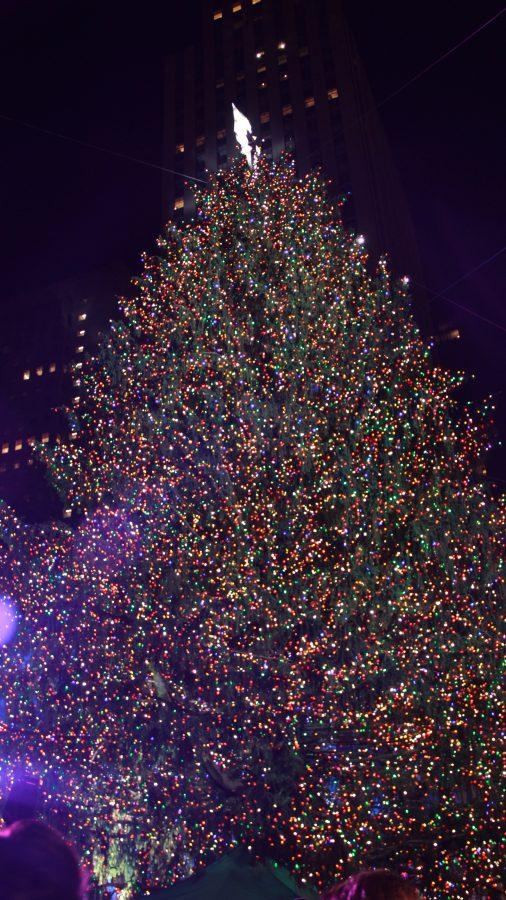 The Rockefeller Christmas Tree dazzles hundreds of tourists and New York natives every year. Courtesy of Bianca Chiappelloni 13'