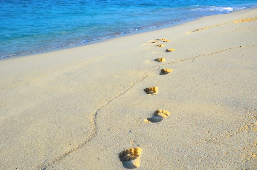 Photo+of+the+Week+-+Path+to+Paradise+-+Courtesy+of+Caroline+Geithner+%2716