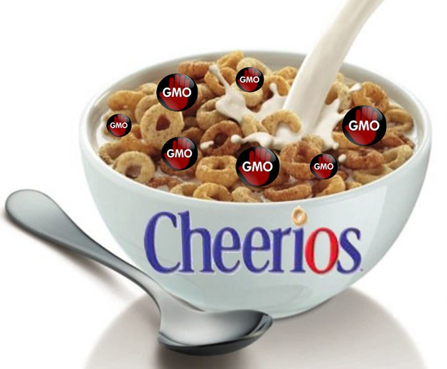 General Mills recently decided to take all of the genetically modified organisms out of all of the ingredients used in Cheerios, which means that the popular cereal brand will be following in the footsteps of Whole Foods, Chipotle, and other food companies. Julia Perry '15