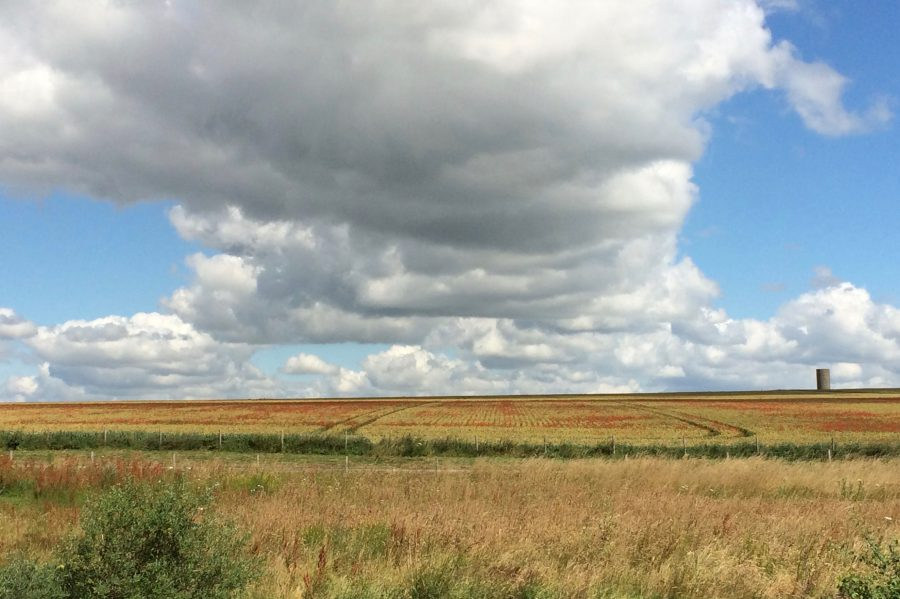 English+countryside+at+Stonehenge+-+Courtesy+of+Madeleine+Black+18