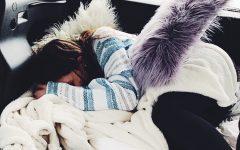 Snooze Courtesy of Kalyna Carroll 18