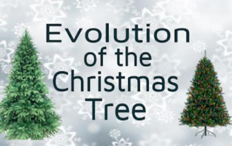 The evolution of the Christmas tree