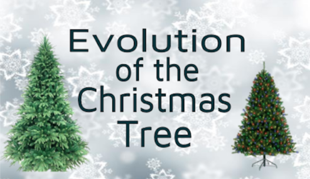 The evolution of the Christmas tree