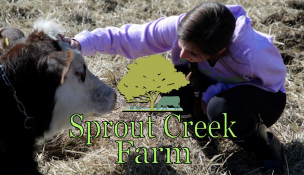 Sophomores retreat to Sprout Creek Farm