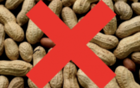 A new study gives hope to people with nut allergies