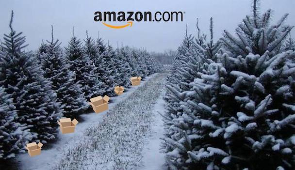 Amazon enters the Christmas tree market