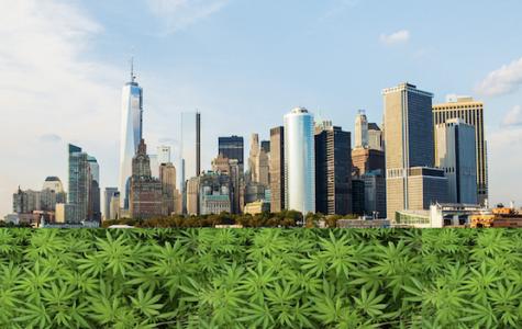 Cuomo takes action to legalize recreational marijuana in NY