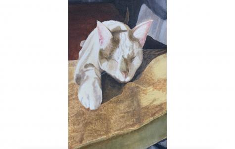 """Art of the Week –  """"Sunbathing"""" – Kara Hodge '20"""