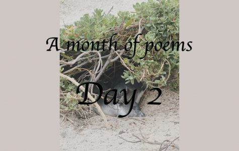 A month of poems: Day two