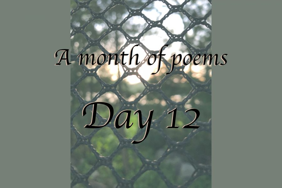 A month of poems: Day 12