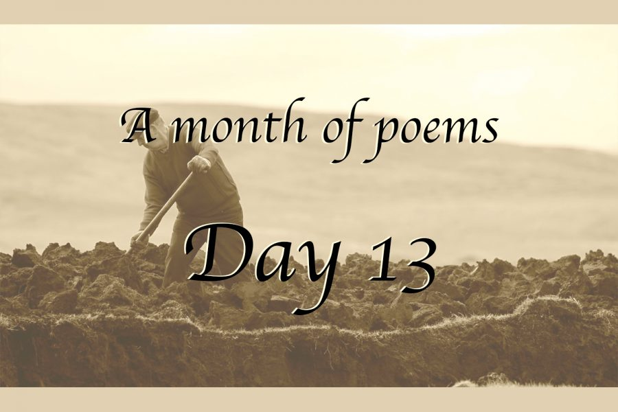 A month of poems: Day 13