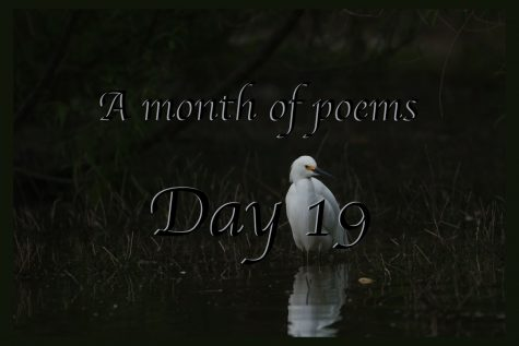 A month of poems: Day 19