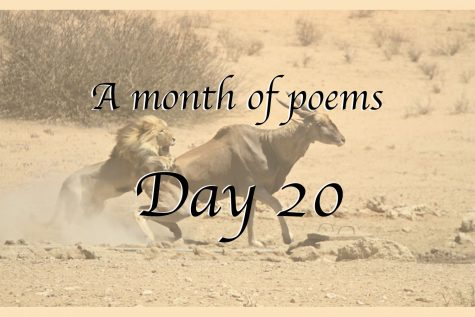 A month of poems: Day 20