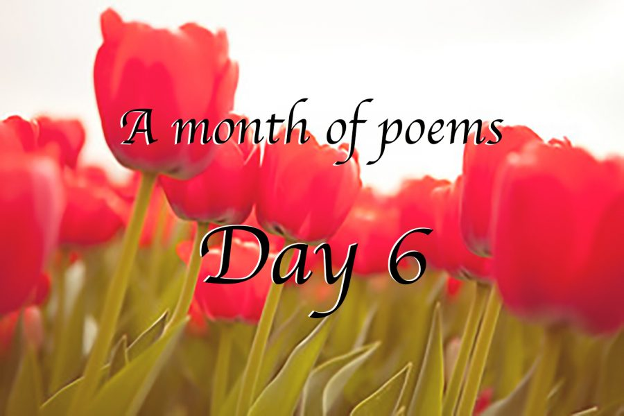 A month of poems: Day six