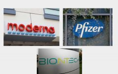 Moderna, Pfizer, and BioNTech begin to distribute COVID-19 vaccines.