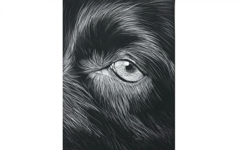 Art – Vivi Caruso '23